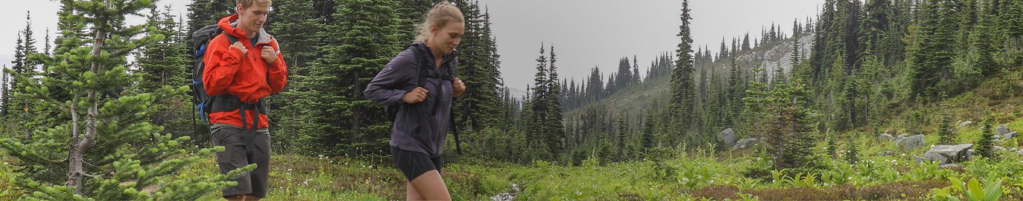 Un couple en randonnée à travers la forêt : protection des environnements, protection de notre monde naturel